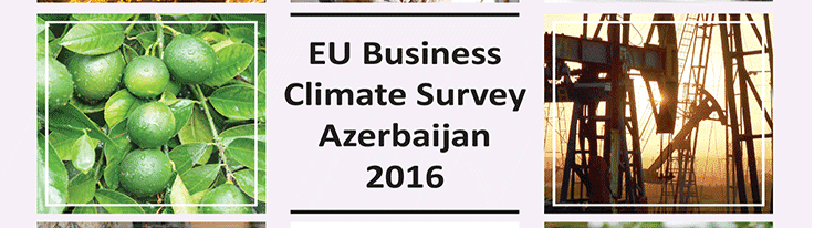 EU Business Survey Azerbaijan 2016